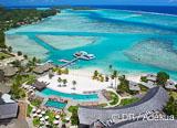Jours 1 à 5 : une nuit à Tahiti puis 4 plongées magnifiques à Moorea pour vous mettre en palmes - voyages adékua