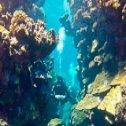 Avis séjour plongée en Egypte
