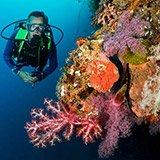 Commentaire de Thierry sur son séjour plongée aux Philippines avec Olivier et Trip Adékua