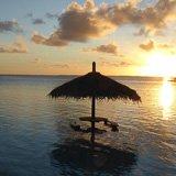 mon commentaire sur mon voyage plongée à Tahiti