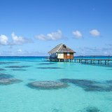 Avis séjour plongée à Tahiti