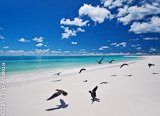 Avis séjour plongée au Seychelles