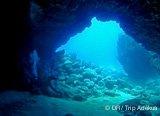 Avis séjour plongée à Lanzarote