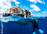 Avis séjour plongée dans le Var Mediterrannée France
