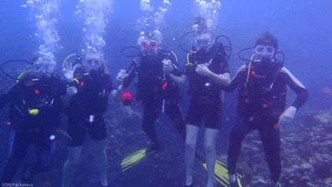 la dominique plongée