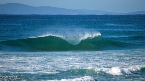 Australie 2020 2021 Vacances Surf Sur La Cote Est Australie Avec Location De Planche Et Ravissant Surfcamp Sur Le Spot Face Aux Vagues Avec Surf Trip Adekua