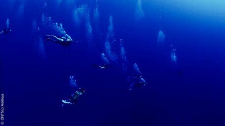 Plongées exceptionnelles au Vietnam