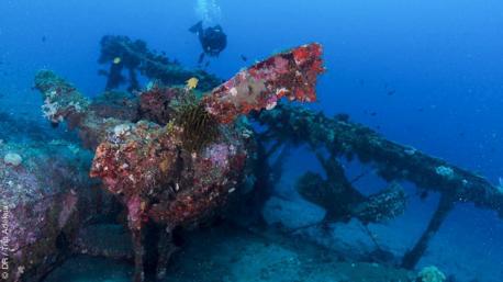 Superbe séjour plongée en Papouasie Nouvelle Guinée
