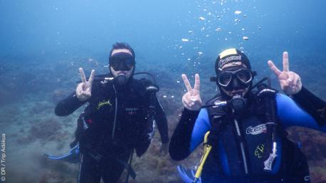 Plongée et découverte aux Iles Canaries