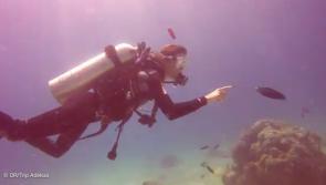 notre super séjour plongée à Nosy Be avec Dive Trip Adékua